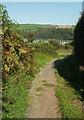 SX8751 : Jawbones Hill, Dartmouth by Derek Harper