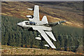 NT4130 : A low flying RAF Tornado in the Yarrow Valley by Walter Baxter