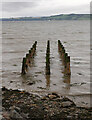 NH7854 : Remains of the jetty, Ardersier by Craig Wallace