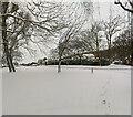 TF0820 : Beech Avenue in the snow by Bob Harvey