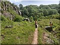 NY0012 : A path in Clints Quarry Nature Reserve by David Medcalf