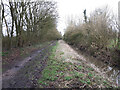 ST9584 : Trackbed of former Malmesbury branch line by Vieve Forward