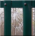 SJ9593 : Frosted Web by Gerald England