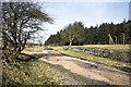 NZ0743 : Parting of tracks beside Saltersgate Plantation by Trevor Littlewood