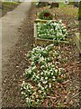SE3130 : Hunslet cemetery - grave with snowdrops and wreath by Stephen Craven