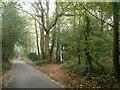 TQ6357 : Foot path through Valley Woods by Anthony Vosper