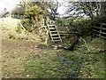 NY9361 : Ladder stile near Queen's Letch Farm by Oliver Dixon