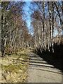 NJ2341 : Speyside Way by Anne Burgess