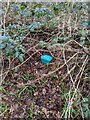 TF0820 : A blue box by Bob Harvey