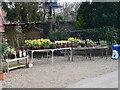 TG3325 : Flower Stall at Cross Keys Dilham by David Pashley