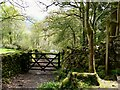NY1700 : Mossy entrance to a bridleway by Marika Reinholds