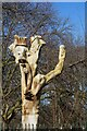 TA0830 : Politicians, tree sculpture in Pearson Park by Ian S