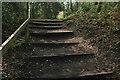 SX8669 : Steps near Magazine Pond by Derek Harper
