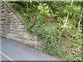 NZ2453 : Pelton Bridge abutment by Adrian Taylor