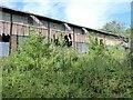NZ2652 : Derelict Warehouse, Stella Gill by Adrian Taylor