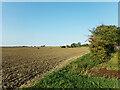 TM0149 : Farmland off Nedging Road by Geographer