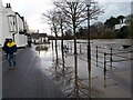 SJ4166 : The River Dee in flood at Chester by Jeff Buck