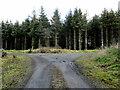S5949 : Track Junction by kevin higgins