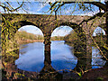 SD7713 : Tottington Viaduct and Island Lodge by David Dixon