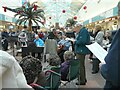 SJ9494 : Carols in Clarendon Mall by Gerald England