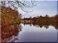 SD8303 : Heaton Park Lake by David Dixon