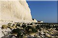 TV5496 : First appearance of cliff algae west of Birling Gap, East Sussex by Andrew Diack