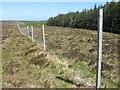 NC6556 : Deer fence bordering Borgie Forest by Chris Wimbush