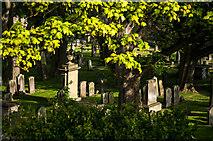 NT9953 : Holy Trinity churchyard by Stuart Wilding