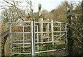 SX8060 : Kissing gate, Totnes by Derek Harper