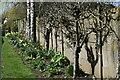 SU2926 : Well-tended footpath at Lockerley by David Martin