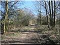 SE3620 : Green Lane heading south-east from Kirkthorpe by Christine Johnstone