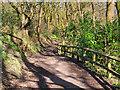 SD8003 : Path at Prestwich Clough by David Dixon