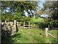 SD2780 : Stile on The Cumbria Way by Adrian Taylor