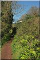 SX8962 : Path, Round Hill by Derek Harper