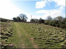 ST1182 : Footpath near Ton Mawr Quarry by Gareth James
