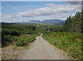 NH4950 : Power line, Auchmore Wood by Craig Wallace