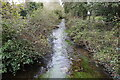 TF7501 : River Gadder from the bridge on Gooderstone Road by Adrian S Pye