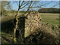 SE3448 : Ruin adjacent to Marsh Lane by Stephen Craven