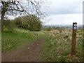 SO9640 : Bridleway Junction  by Chris Allen