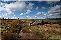 NY9617 : Drove road on Loups's Hill by Andy Waddington