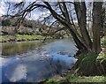 SO7486 : The River Severn at Hampton by Mat Fascione