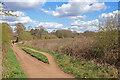 SO8074 : Severn Valley Railway near Bewdley by Chris Allen
