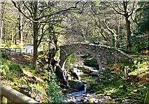 J3432 : View downstream towards Foley's Bridge by Eric Jones