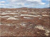 NJ1207 : Granite gravel patches by David Lecore