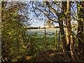 TF0820 : A frosted field by Bob Harvey
