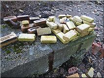 NS2975 : Old Bricks at Garvel Point by Thomas Nugent