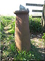NZ0914 : Not so Old Boundary Marker on the Teesdale Way east of Mortham Tower by Mike Rayner