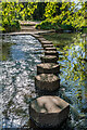 TQ1751 : The Stepping Stones by Ian Capper