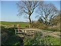 SE2723 : Footbridge over a boundary ditch by Stephen Craven