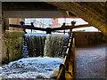 SJ8497 : Rochdale Canal, Lock#88 at Oxford Street by David Dixon